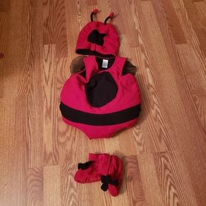 Baby lady bug costume 12-18 months